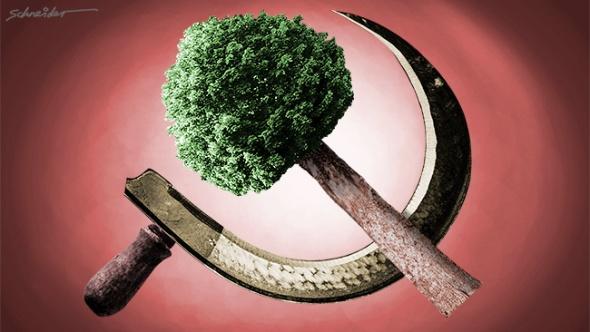 green agenda