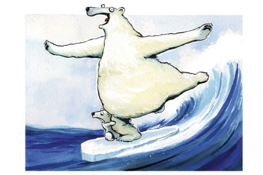 Polar_Surf_se