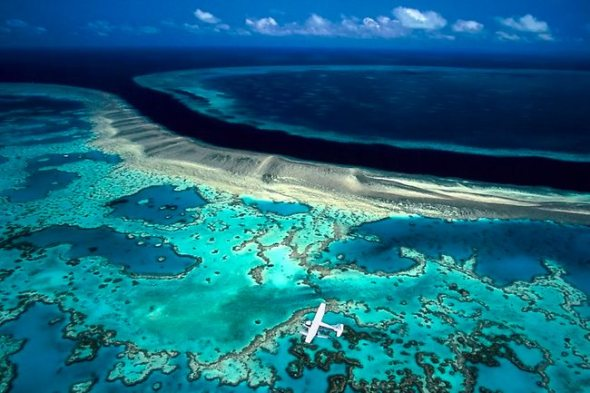 596610-hook-and-hardy-reef-great-barrier-reef