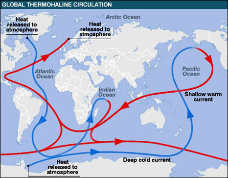 global_thermohaline