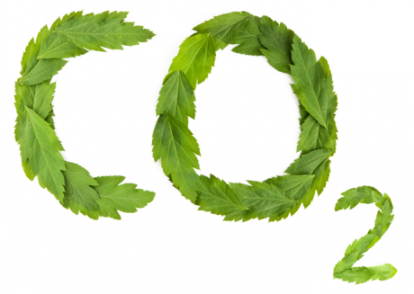 102_2_co2-logo.png