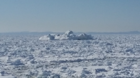 Strait-of-belle-isle pack ice_April 19 2017_Nordik Relais