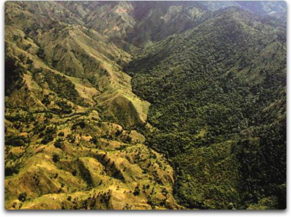 Border between Haiti and the Dominican Republic- Guess which country contains eco-criminals that can afford to use fossil fuels, and which country contains nature-lovers who are dependent on natural renewable organic biomass for energy?.jpg
