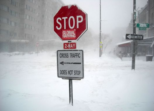 Stop_global_warming_sign_in_blizzard_-_February_10,_2010_blizzard.jpg