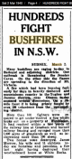 https://trove.nla.gov.au/newspaper/article/187487840?searchTerm=NSW%20bushfires%20march&searchLimits=l-availability=y   l-australian=y