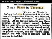 https://trove.nla.gov.au/newspaper/article/172116238?searchTerm=Victoria%20bush%20fires%20march&searchLimits=l-availability=y|||l-australian=y