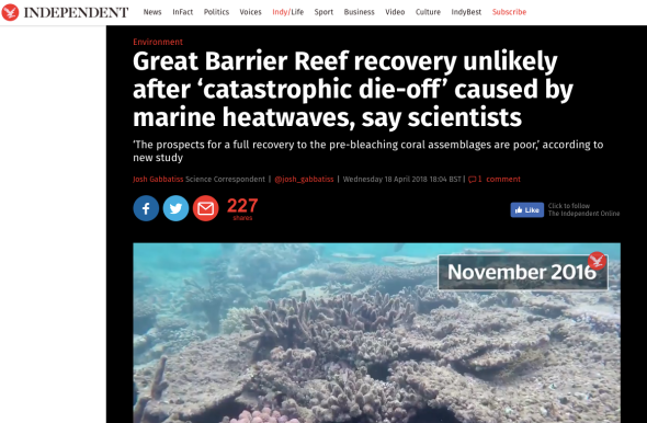 Great Barrier Reef recovery unlikely after 'catastrophic die-off_ caused by marine heatwaves, say scientists - The Independent