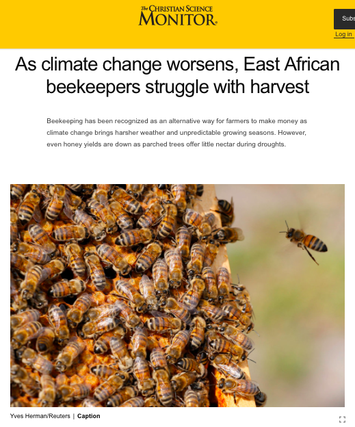 As climate change worsens, East African beekeepers struggle with harvest - CSMonitor.com