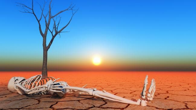 Cheer up. If we keep our heads we are likely to deal with climate challenges the same way we got to where we are; innovation, markets, democracy and optimism.   The Australian