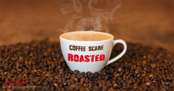 COFFEE Scare Roasted CLIMATISM