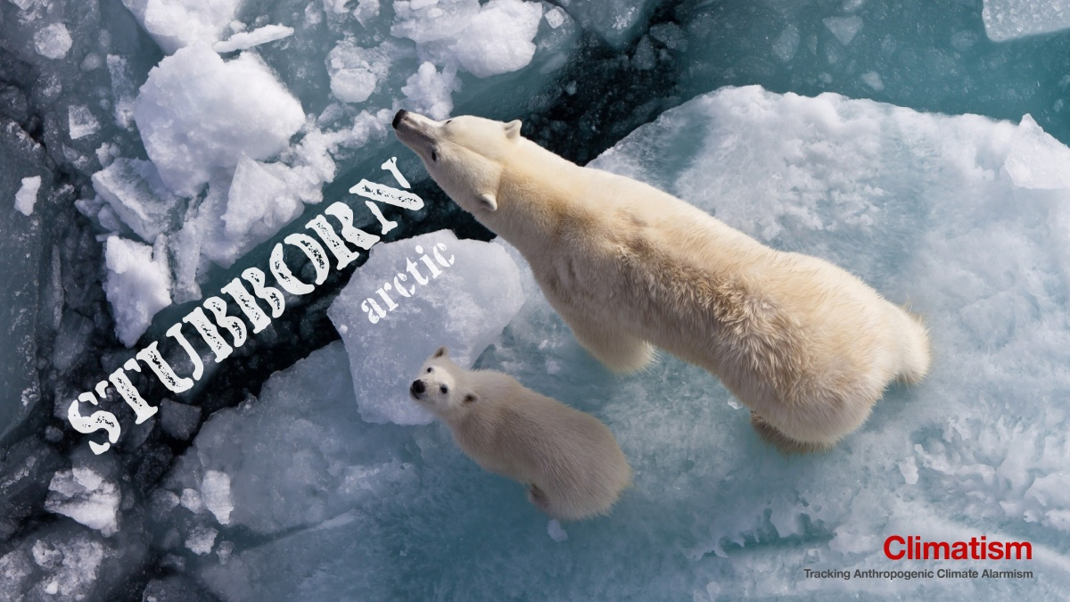 STUBBORN : Arctic Sea Ice Just Won't Play The Game