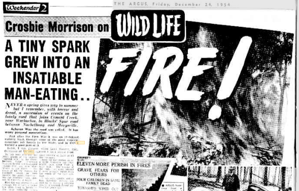 24 Dec 1954 - A TINY SPARK GREW INTO AN INSATIABLE MAN-EATING.. - Trove copy.png