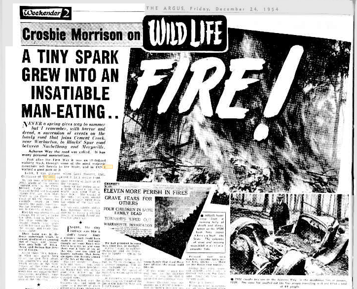 24 Dec 1954 - A TINY SPARK GREW INTO AN INSATIABLE MAN-EATING.. - Trove.png