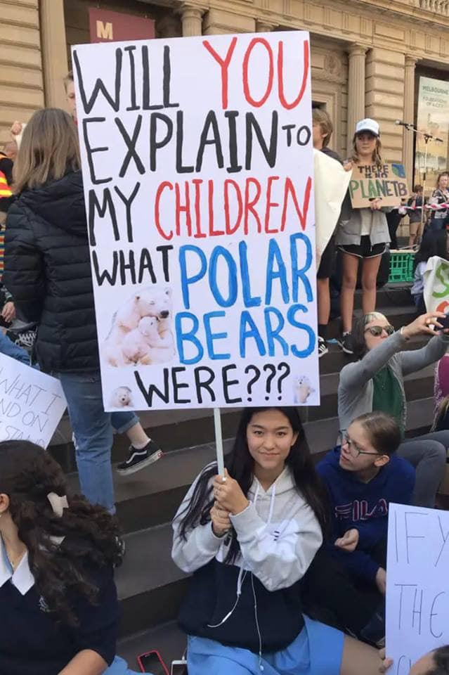 Climate Strike - POLAR BEARS