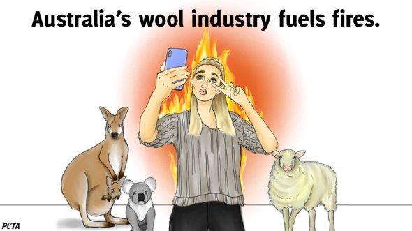 PETA - CC Propaganda