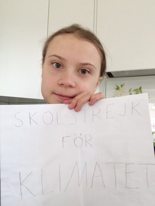 (19) Greta Thunberg on Twitter