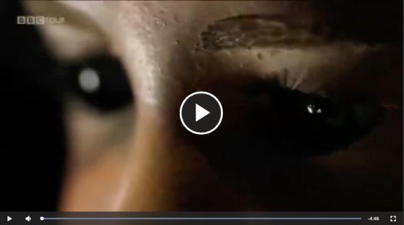 Screen Shot 2020-04-26 at 5.09.39 pm